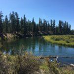 fall river in la pine state park, oregon